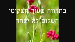 שיר מולדת Song for Homeland by Aviva Golan and Naomi Levi