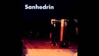 דני צוקרמן  - Hellhound On My Trail