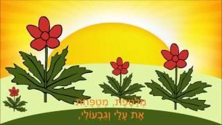 שיר עד - יום יפה - לאה גולדברג | רבקה גוילי (ברוידא) | בביצוע נחמה הנדל - Yom Yafe