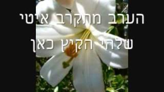 שושן צחור - שושיה בארי דותן / מילים : אביבה גולן