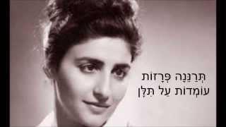 שיר עד - ומלאו הגרנות בר - מהמקורות | עזרא גבאי | שירה: הדסה סיגלוב u'Mal'u ha'Granot Bar