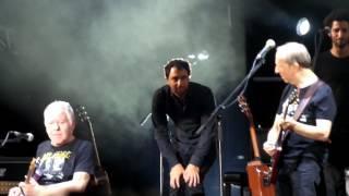 """""""הי יוייה"""" להקת כוורת בפארק יהושוע-8-8-2013"""
